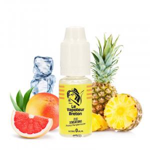 E-liquide Ananas Pamplemousse par Le Vapoteur Breton