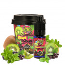 Concentré Kiwi Mint Acai par Juicy Mill