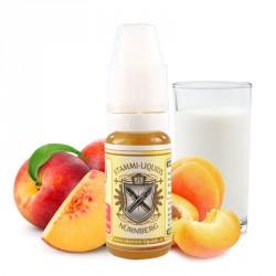 Concentré Fruity Milk par Stammi
