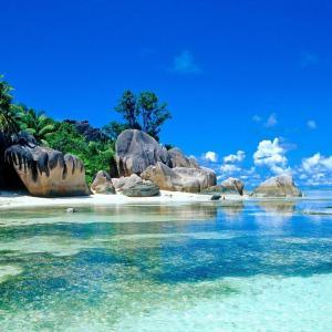 Trip to Paradise